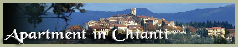 Apartment in Chianti for holidays